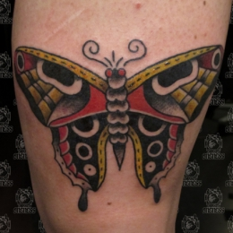 Tattoo Butterfly by Vincent penning