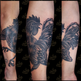 Tattoo Black cock by Pieter pas